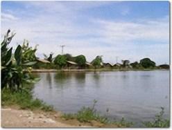 Barramundi Ponds Thailand