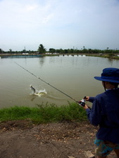 lure fishing in Thailand at Boon Mar Ponds