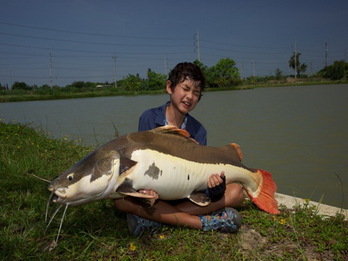 fishing in Thailand at IT Lake Monsters