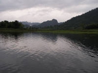 Jungle Carp Fishing in Thailand