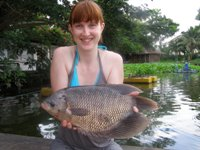 Giant Gourami Fishing Bangkok