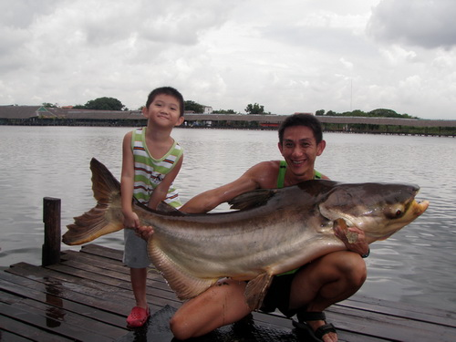 Monster Fish Thailand