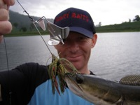 Scary Baits Lures