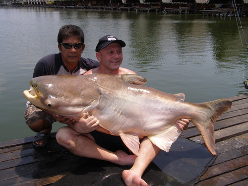 Mekong catfish fishing in Thailand