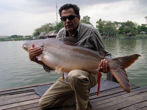 Rajan Ray fishing in Bangkok