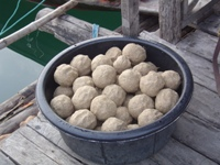 Large balls of groundbait 'ram' ready to be fed into the carp fishing swim