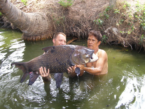 Carp fishing Bangkok with Fish Thailand Team