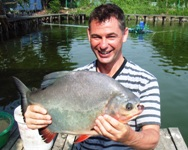 Pacu fishing in Bangkok