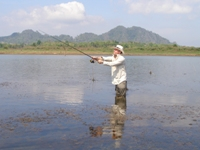 lure fishing in thailand for snakehead - jungle fishing
