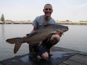 Mekong giant Catfish fishing thailand