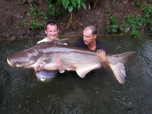 170lb Mekong Catfish