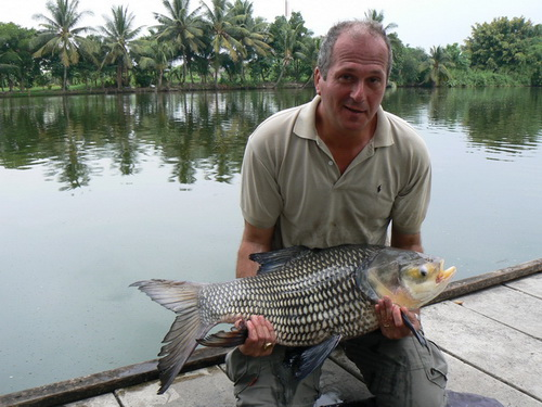 Shadow Lake fishing in Bangkok produces lovely Siamese Carp like this guided by Fish Thailand