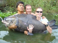 Worlds biggest carp caught by a female angler 132lb