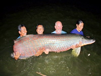 worlds biggest arapaima caught fishing in thailand