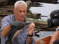 Jeremy Wade fishing in Thailand for giant snakehead