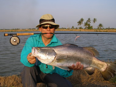 fly fishing in Thailand for barramundi
